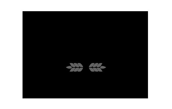 Schmidtchen City Bleichenfleet Logo